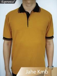 Polo-Shirt-Jahe-Kmb